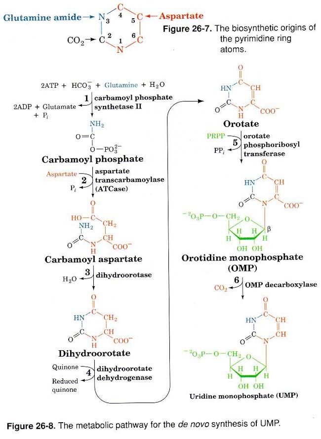 aspirin sythesis