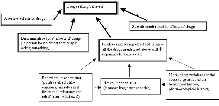 Substance Abuse and CNS Stimulants